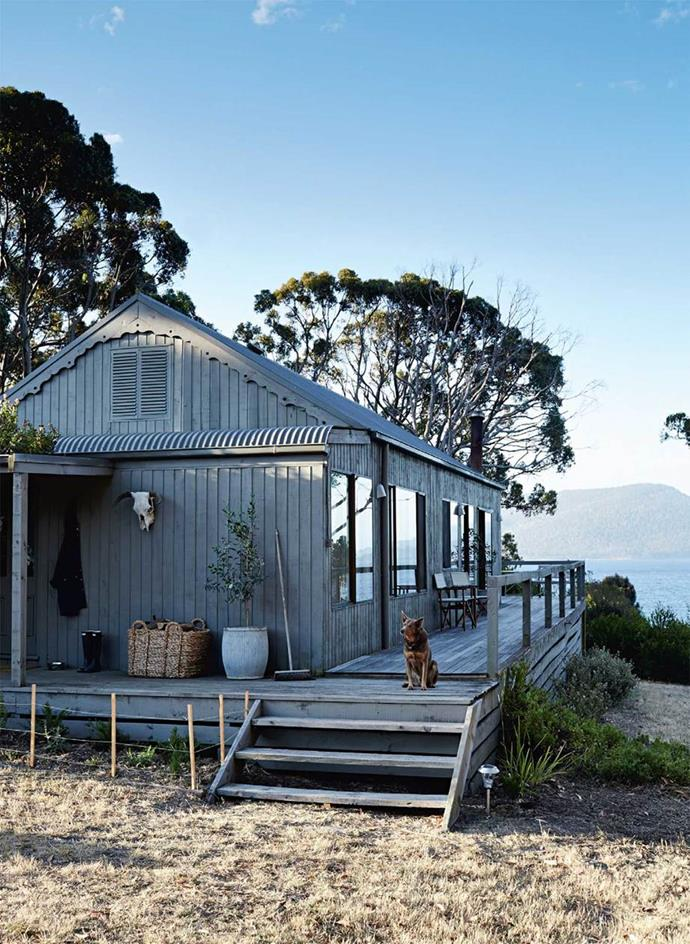 """After inheriting [Summer House on Tasmania's Satellite Island](https://www.homestolove.com.au/your-own-private-island-retreat-13661 target=""""_blank""""), The Alstergren family quickly set about updating the rustic beach shack on the island, painting the exterior a dark contemporary shade and creating a bunk bed room to accommodate extra guests."""
