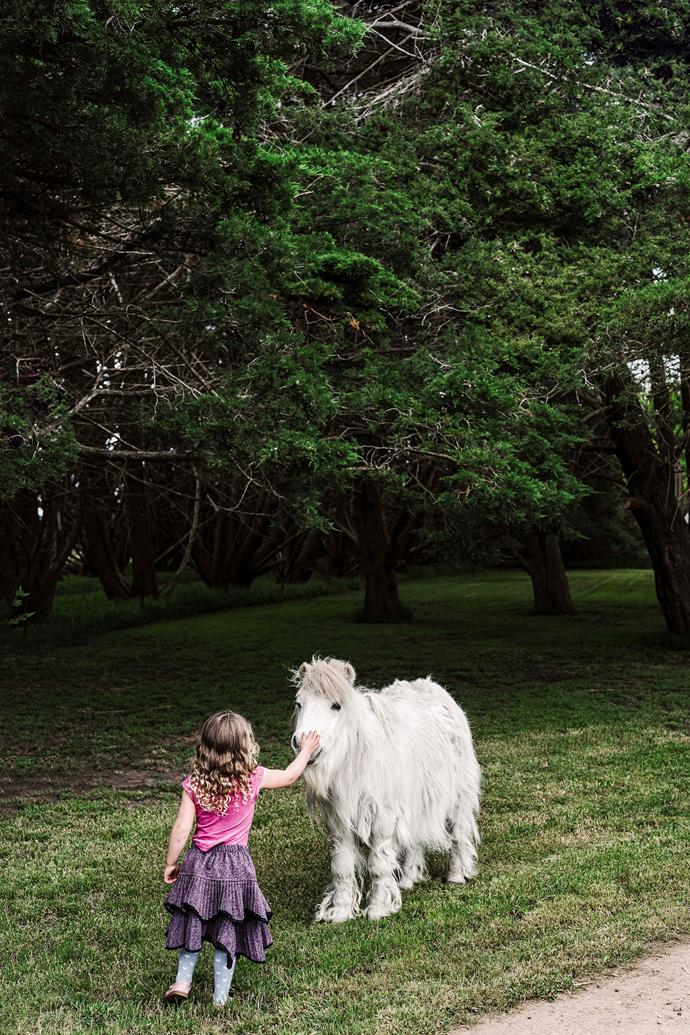 Lorien pets Flemington, the miniature horse.