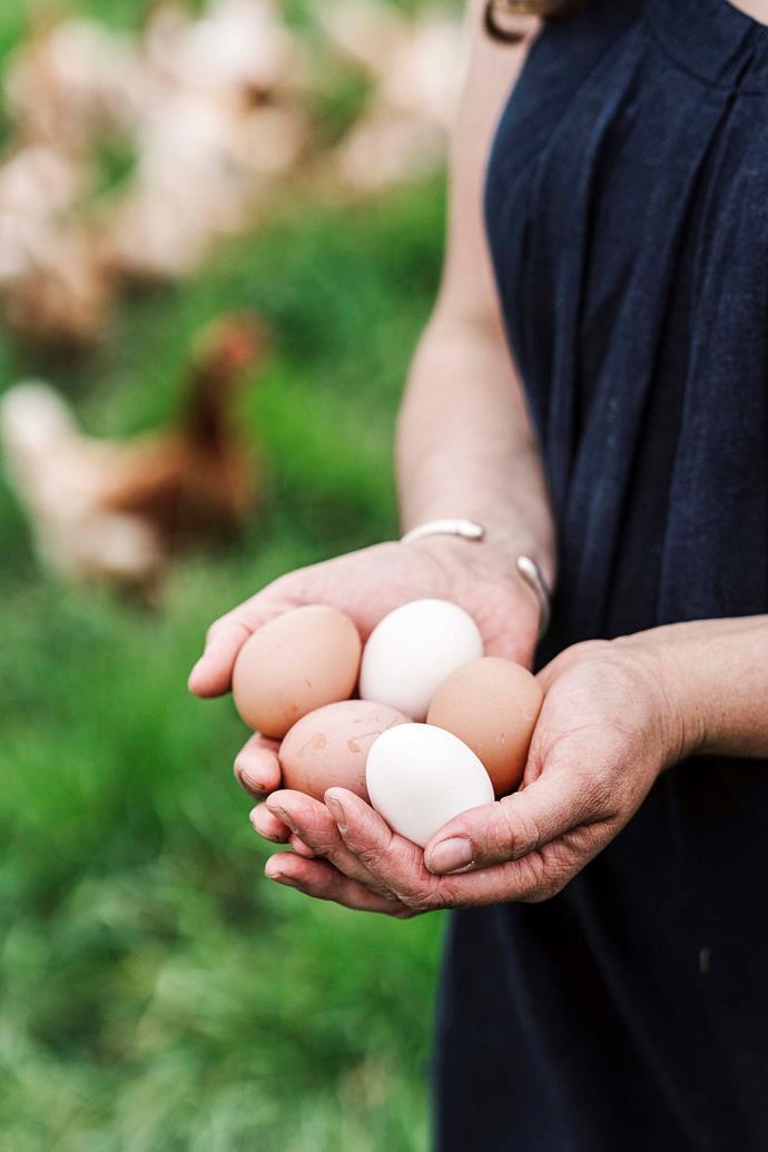 Madelaine's organic free-range eggs.