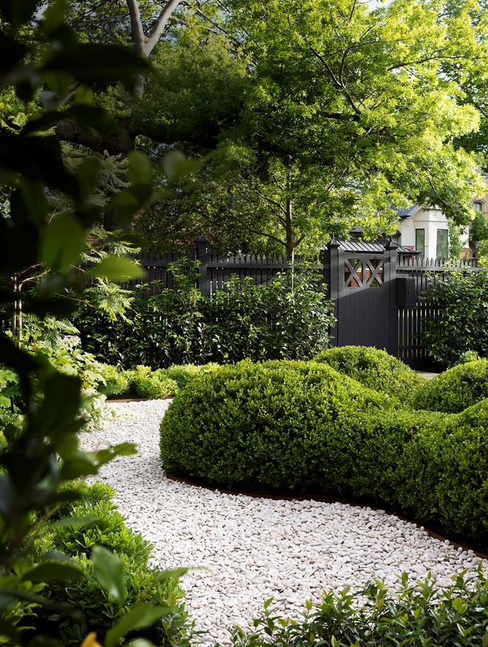A picket fence provides screening from the street; a row of Portuguese laurel (Prunus lusitanica) will grow tall for further privacy.