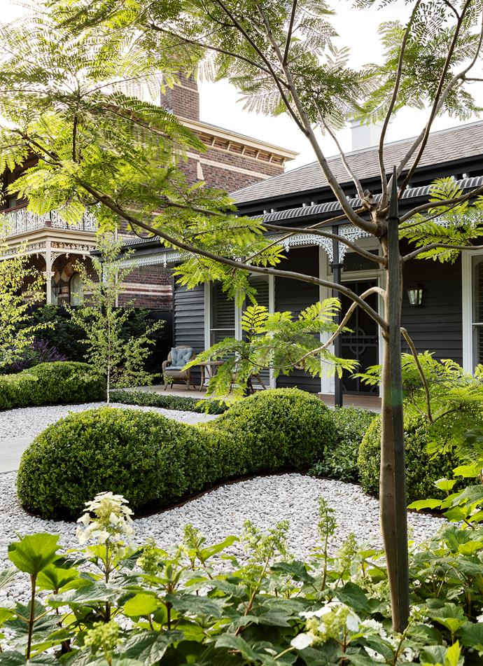 The cottage verandah is edged in Chinese star jasmine (Trachelospermum jasminoides), forming an outline around the white pebbles.
