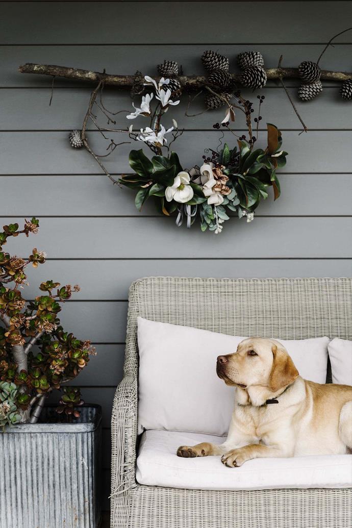 Gus the labrador enjoys a rest on the verandah beneath one of Sarahs' handmade creations.