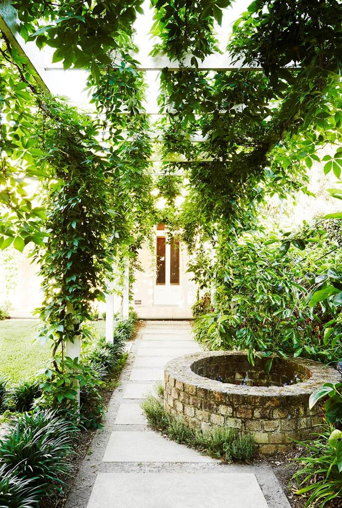 """Virginia creeper cascades over the pergola, creating a lush green curtain and dappled shade for those passing beneath in this [19th century garden that pays homage to its heritage](https://www.homestolove.com.au/19th-century-garden-restored-to-heritage-state-4210