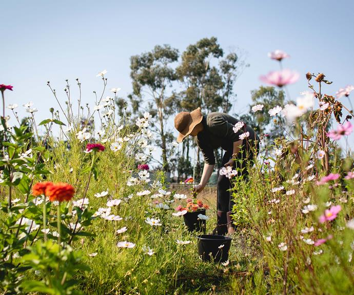"""""""As a freelance writer and PhD student, so much of my work is undertaken alone - getting out in the dirty and sharing this flower adventure with Mel is pretty special,"""" says Eliza."""
