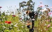 Tour Gather Flower Farm where flowers bloom as nature intended