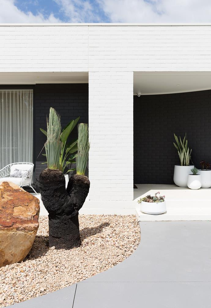Natural Snow Gum cladding, 75mm x 75mm, from Deco Wood Australia (below) makes a fine backdrop to the Blue Grass Tree from Draco Concepts and large sandstone boulders from Australian Native Landscapes.