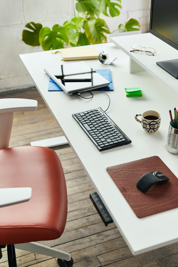 Electric standing desks are rising in popularity for their ability to transition between heights with the touch of a button.