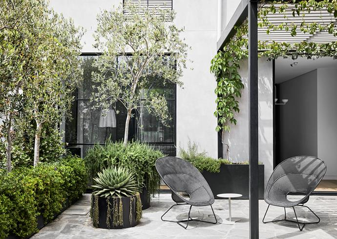 A north-oriented courtyard with its steel-framed pergola functions as an outdoor room.