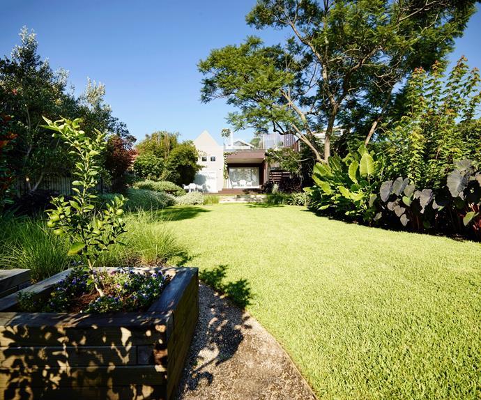 Backyard with a healthy green lawn