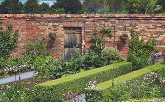 Garden surrounded by a tall brick wall