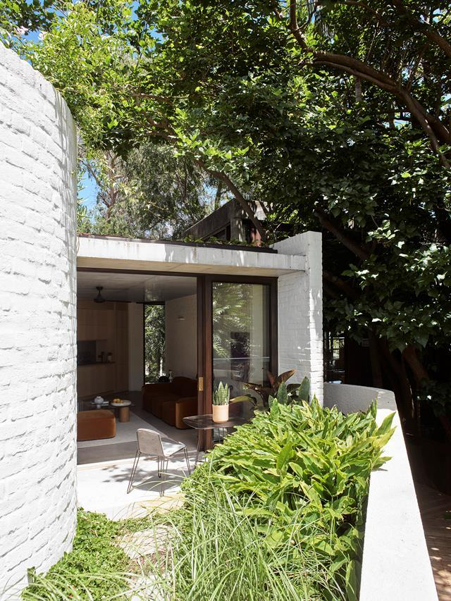 """This delightfully verdant space gives the [modern building](https://www.homestolove.com.au/modern-home-balmain-22563/