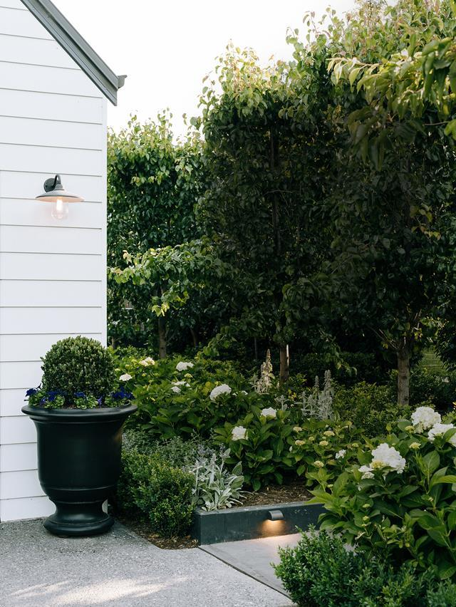 """Hydrangeas burst into life each spring in this [Melbourne garden](https://www.homestolove.com.au/country-style-garden-melbourne-21987/