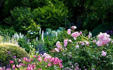15 flowering gardens in full bloom