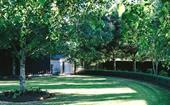 Expert lawn care tips for Australian gardens