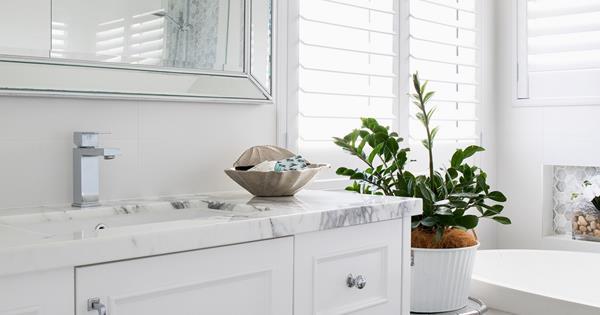 Bathroom plants: 7 indoor plants that thrive in bathrooms