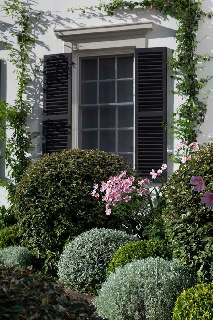 Image: Garden Life