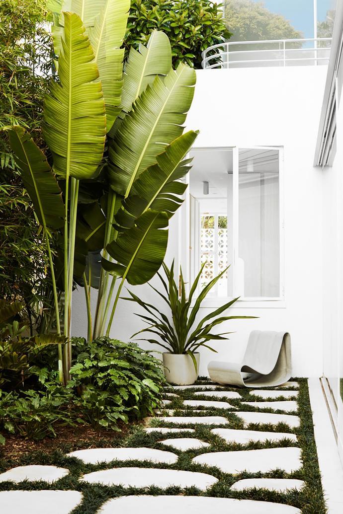 Photographer: Prue Ruscoe / aremediasyndication.com.au
