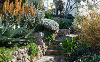 9 garden trends we'll be hedging our bets on in 2022