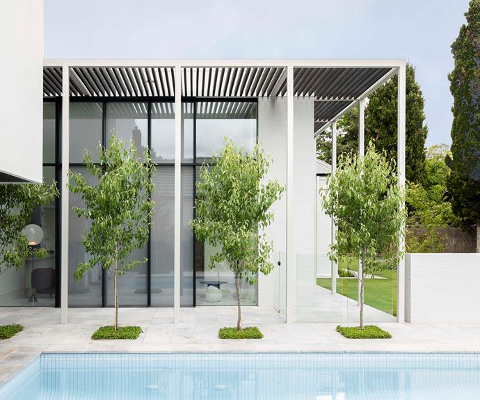 A row of ornamental pear trees is set among Pietra Grigio pavers from Granite Works Australia.