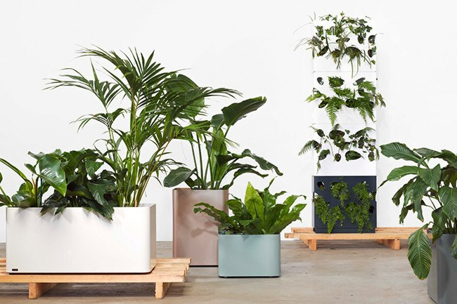 **2\. Stack 'em up**  Choose the right product to suit your needs and space. These stacking wall planters from Tait can be built up to your preferred height and create visual interest in any home.    Garden wall, POA, [Tait](http://www.madebytait.com.au/products/garden-wall-boxes/)