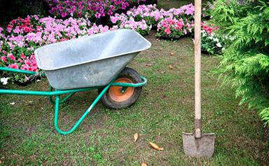 Buyer's guide to gardening tools