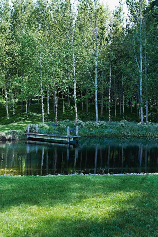 **14.** A grove of birch trees lines the side of the man-made pond.  **>>[Country home renovation](http://www.homelife.com.au/homes/galleries/country+home+renovation+,25195?pos=9)** | Photo: Prue Ruscoe