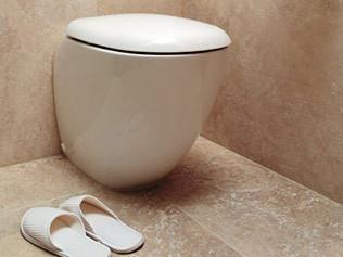 This cistern-less toilet uses a flush activated by an electronic touch pad connected to the mains-pressure water supply. Pozzi-Ginori 'Easy 02' floor-mounted toilet, from [Reece](http://www.reece.com.au/) Design.  Photograph courtesy of Reece Design.