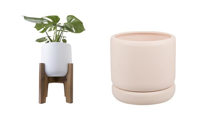 Pot with acacia stand, $15 and curved pot with saucer, $12.