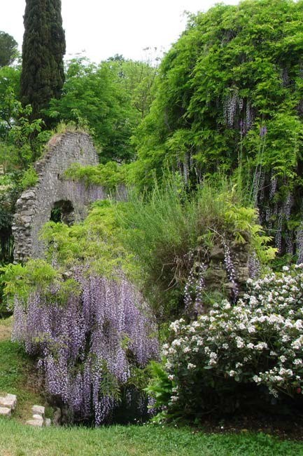 **Gardens of Ninfa in Italy** | [Romantic Italian garden ](http://www.homelife.com.au/garden/grow/italian+garden,5007)[](http://homelife.com.au/grow/2759/the+secrets+of+a+romantic+garden)