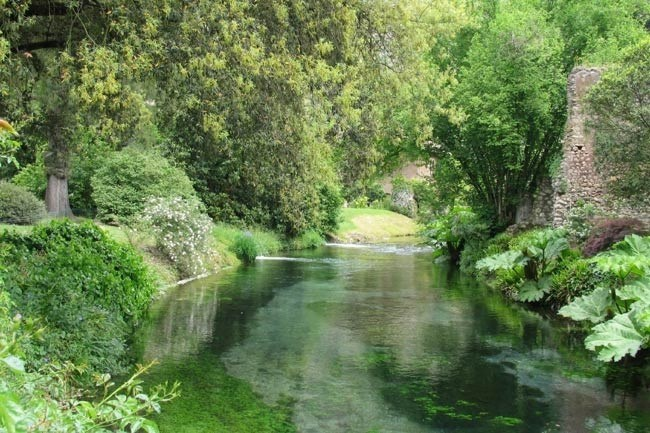 **Gardens of Ninfa in Italy** | Swans frequent the fast-moving stream and waterfall adjacent to the garden.