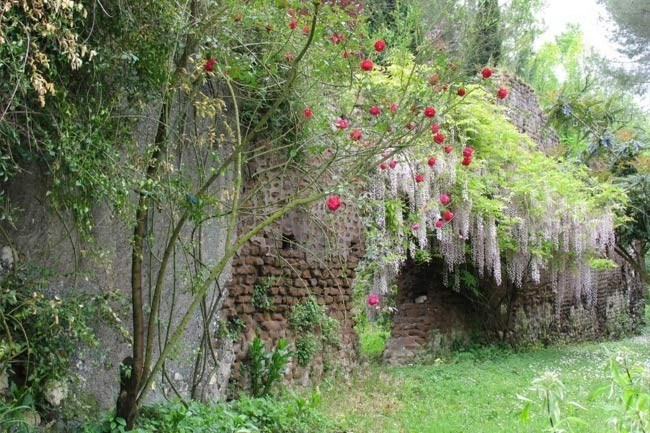**Gardens of Ninfa in Italy** | Climbing plants in flower are definitely required of a romantic garden. Of all the climbing plants, roses are an absolute must.