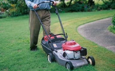 Lawn maintenance: 7 of the best tips for lush turf