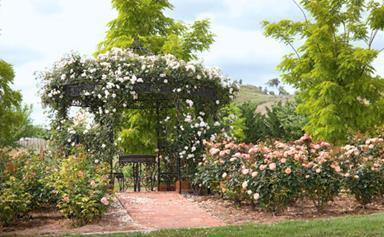 European inspired garden