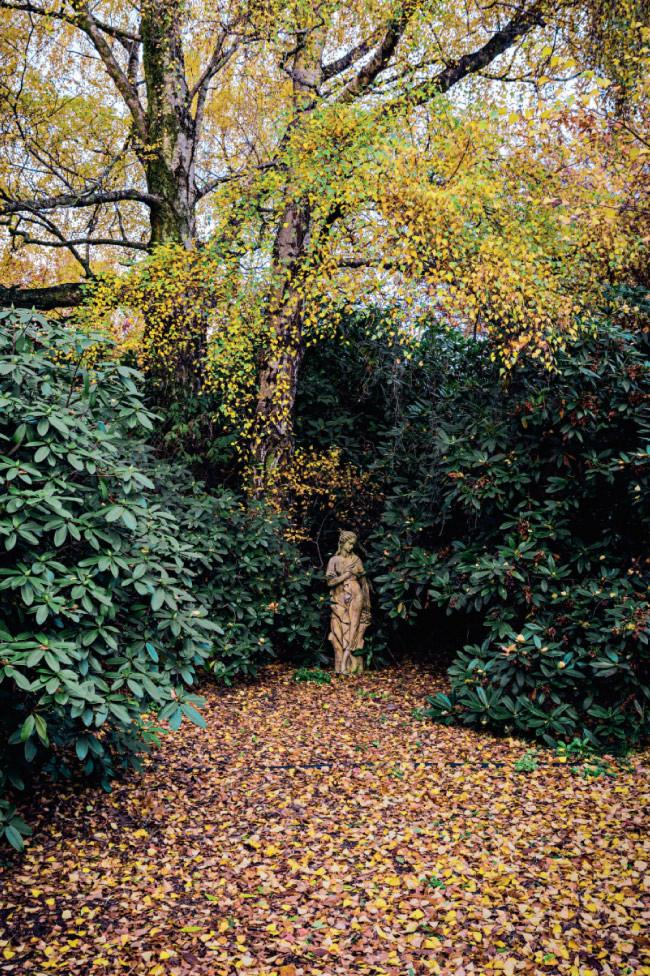 A statue almost hidden among the rhododendrons in the dell at [Culzean](http://www.culzeangardens.com/) gardens. Click here for [autumn gardening guide](http://www.homelife.com.au/gardening/features/autumn+gardening,5591).