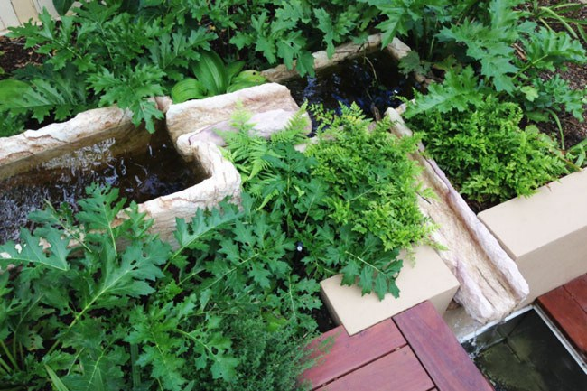 **10\. Antique style sandstone water feature.** The garden owner wanted a trough water feature like one she'd seen in France. I hand-chiselled out sandstone blocks so they could hold water and feed smaller sandstone water flutes. The result looks like an ancient monument surrounded by foliage.