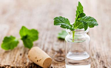 How to make natural peppermint glass cleaner