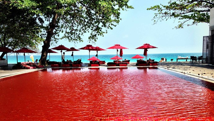 The Library, Thailand. No, it's not a scene from a horror movie! This pool gets it's startling scarlet colour from mosaic tiles of orange, yellow and deep red.