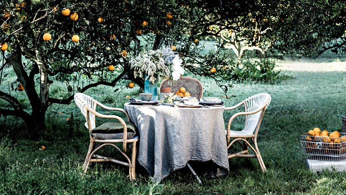 Tie your surrounds into the table setting - especially if you're lucky enough to have a orange tree fruiting in your garden.   Photo: Felix Forest