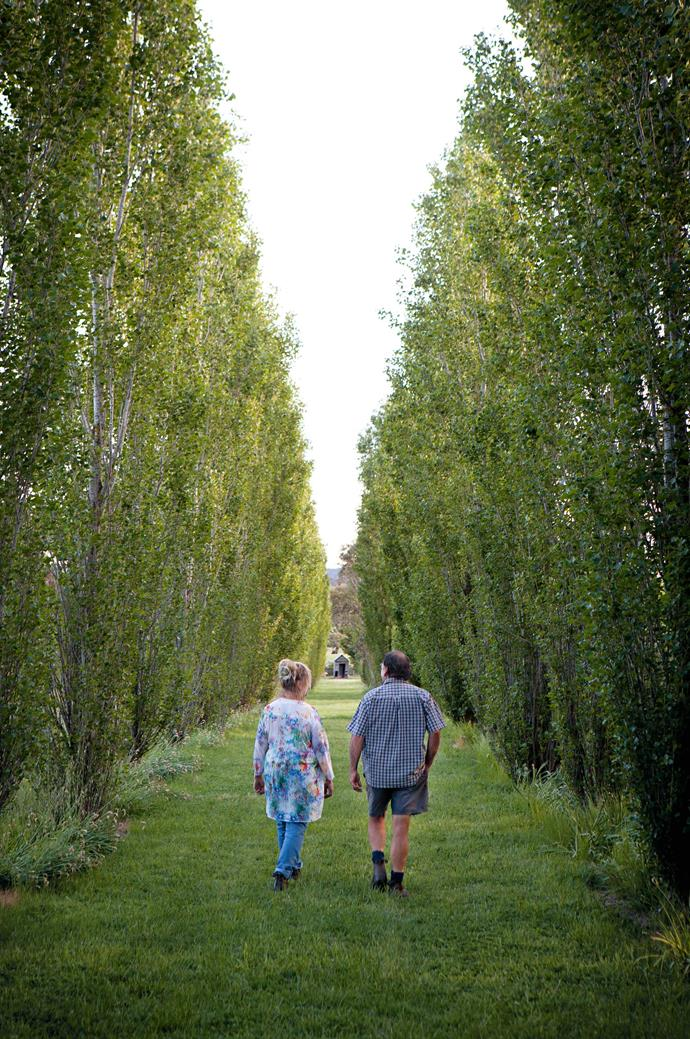 Ruth and Barry stroll down the poplar avenue.