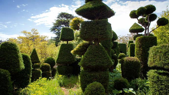 These cypresses have been sculpted into an impressive geometric array at the Rosebery Hill property.