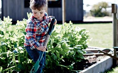 How to start a kid-friendly vegetable garden