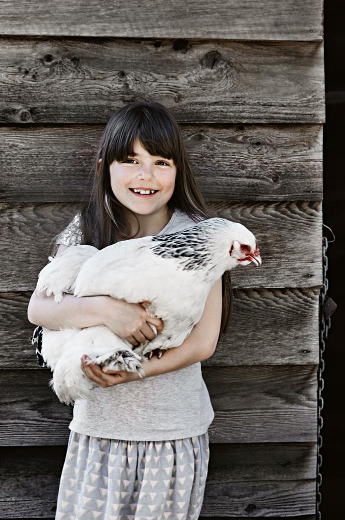 Chickens are easy to look after making them great pets for children.