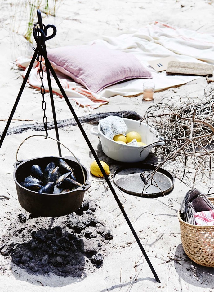 CLOCKWISE, FROM LEFT Campfire tripod, $24.95, and camp oven with lid, $39.95, both from Aussie Disposals. Turkish towel, $39.95, from The Shelley Panton Store. Linge Particulier cushion, $55, from Scarlet Jones. Moleskine 'Cahier' journal, $13.95 a set of three, from Eckersleys. Raffia clutch, $49.95, from Turner and Lane. 'Reko' glass, $1.99 a set of six, from IKEA. Fishing net, stylist's own. Reiss colander, $89, from The Shelley Panton Store. Linge Particulier linen napkin, $20, from Scarlet Jones. Basket, $49, from Manon Bis. Linen napkins, $9.95 each, from The Shelley Panton Store. 'Cucina' striped dishcloth in Coral, $12.95 a set of four, from Bed Bath N' Table.   Photo: Lisa Cohen