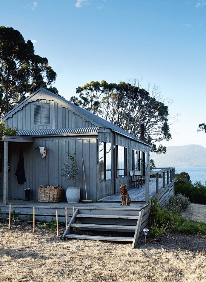 The exterior of the beach shack with kelpie Cricket keeping watch.