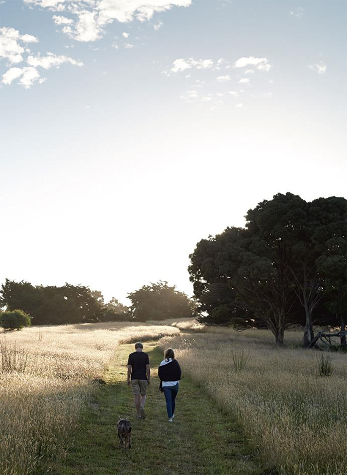 Hectares that were once used for farming sheep now provide ample space for inspiration and gazing at the night sky.