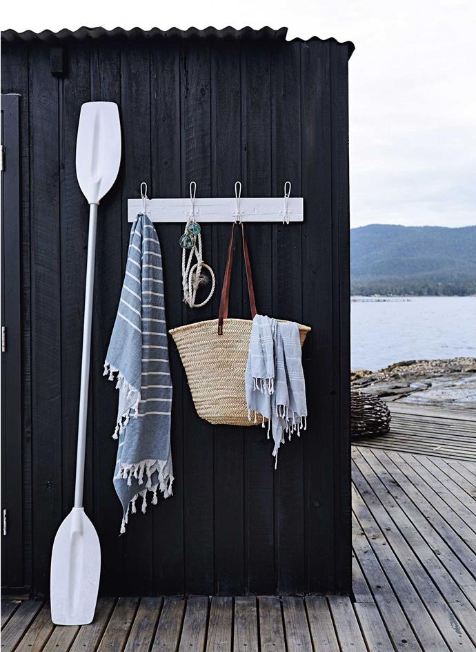 Emblems of summer on the boathouse wall, with Bruny Island in the distance.