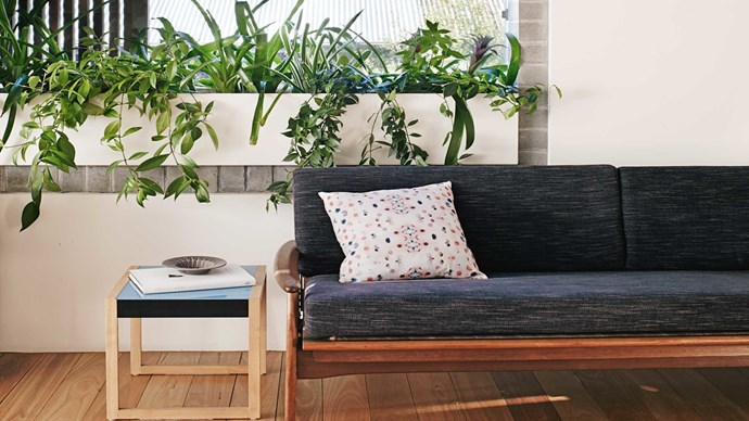 Bring the outdoors in. Houseplants are your friend, but don't think you have to stop at a fern at two. Get creative by tending to succulents, creepers and even fruit trees. As long as they're getting the light and water they crave, you'd be surprised by what you can grow (and what a difference it makes to your interior).