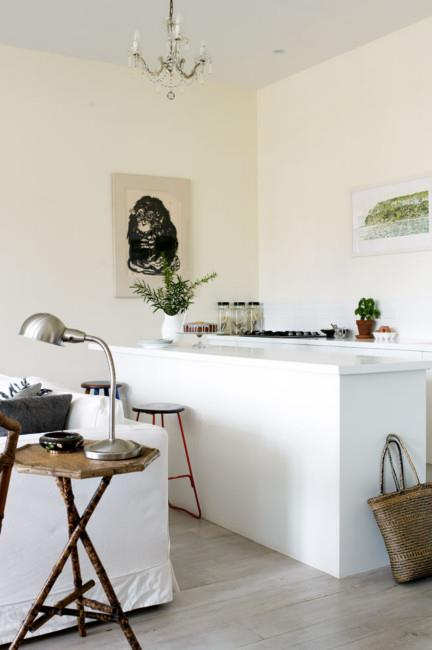 The fresh lines of the kitchen are offset by a pen and ink drawing of a monkey.  | Photo: Prue Ruscoe