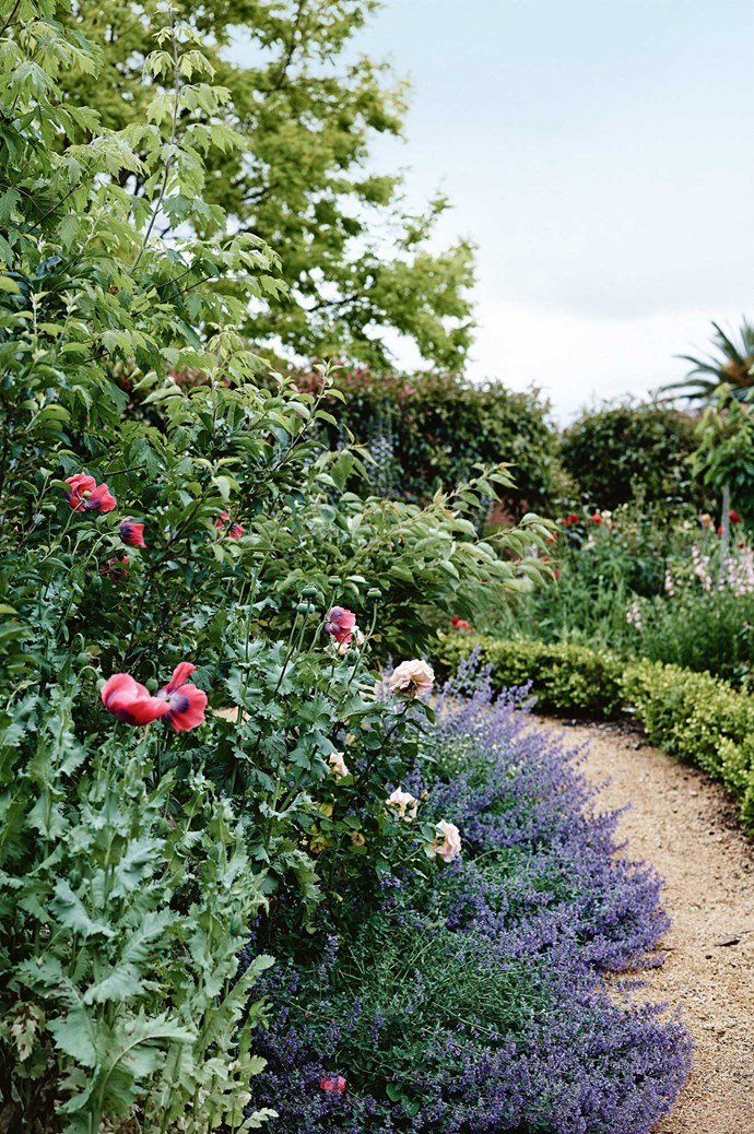 Susie's passion for classical garden layouts led her to found Susie Nugent Garden Design.