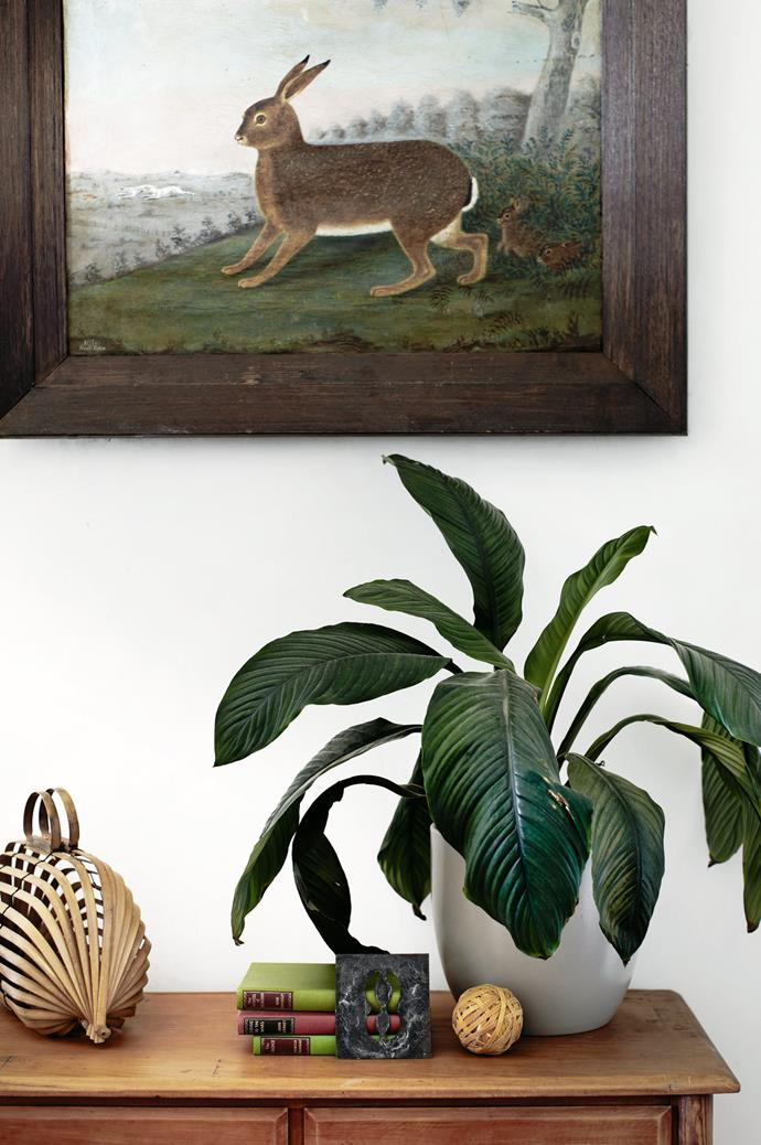 The couple's belongings are loaded with meaning and sentiment; whether it's the exquisite heirloom sideboard, a bamboo opium mat from Thailand or Chee Soon & Fitzgerald wallpaper from their former suburb of Surry Hills, Sydney.